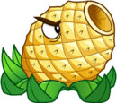 Pineapple Cannon