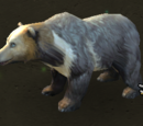 Niebieski Niedźwiedź
