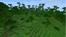 Borde de jungla.png