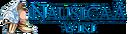 NausicaA Wiki-wordmark-candidate.png
