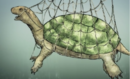 Giant Turtle of enormous girth.png