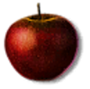 Tw3 apple.png