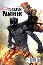 Black Panther Vol 6 1 Coipel Variant.jpg