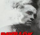 New-WWE Payback 2