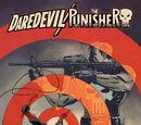 Daredevil/Punisher Vol 1