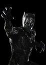 T'Challa (Earth-199999) from Captain America Civil War 001.jpg