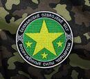 Чернорусские Силы Обороны