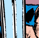 Ray White (Earth-616) from Punisher Vol 2 4 001.png