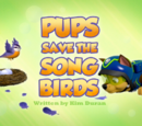 Pups Save the Songbirds/Images