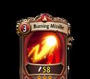 Burning Missile