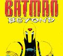 Batman Beyond Vol 5 13/Images