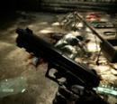 Niveles de Crysis 2