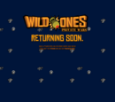 Wild Ones: Private Wars