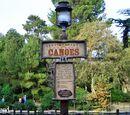 Treasure Cove attractions