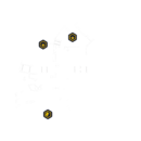 Overground - Map (transparent) with objectives.png