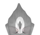 Light Crystal