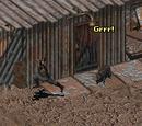 Ochłap (Fallout i Fallout 2)