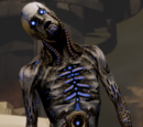 Undead Machine Physiology