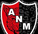Tercera División/Grupo I