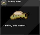 Arid Queen