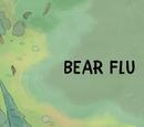 Bear Flu