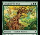 Cloudcrown Oak