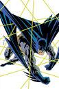 Batman 0110.jpg