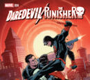 Daredevil/Punisher Vol 1 4