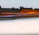 Bang rifle