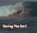 Saving the Surf (transcript)