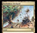 Forbidden Orchard