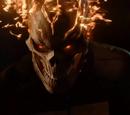 Marvel's Agents of S.H.I.E.L.D. Season 4 1