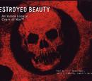 Gears of War: Belleza Destruida