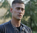Will Scarlet