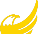 US Libertarian Party