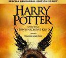 Harry Potter und das verwunschene Kind - Teil eins und zwei (Special Rehearsal Edition Script)