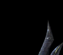 Zora Shield