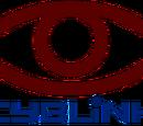 Cyblink Global