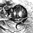 Cheshire Cat Tenniel.png