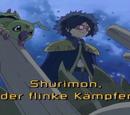 Shurimon, der flinke Kämpfer