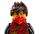 The LEGO Ninjago Movie minifigures