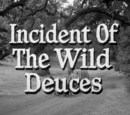 Incident of the Wild Deuces