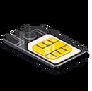 Unique Asset SIM Card.png