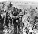 M1942 One-Piece Camouflage Suit