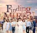 Finding Mr. Right (2017)