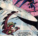 Whirly-Bat 004.jpg