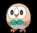 Alola Starter Pokémon