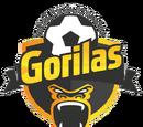 Gorilas de Juanacatlán