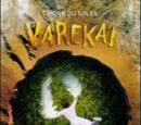 Varekai (DVD)