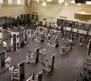 Malmo Fitness Center